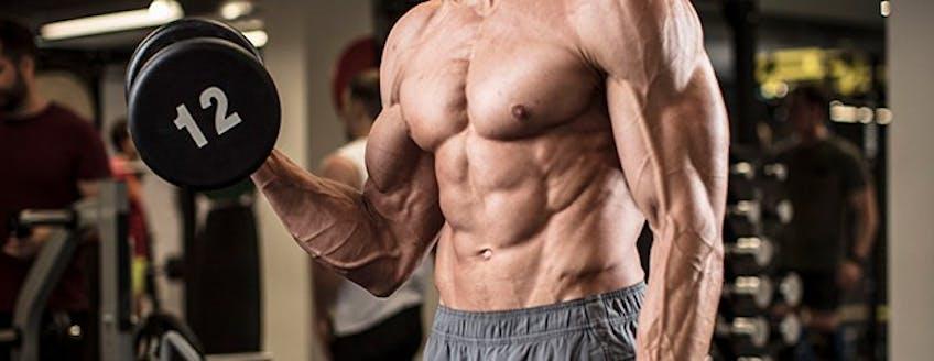Creatine-for-Bodybuilding.jpg