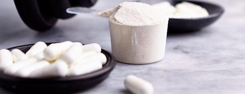 creatine-powder-header.jpg