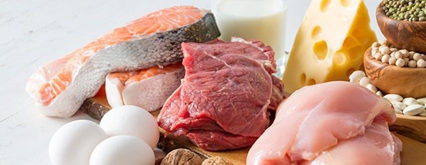 high-protein-meals.jpg