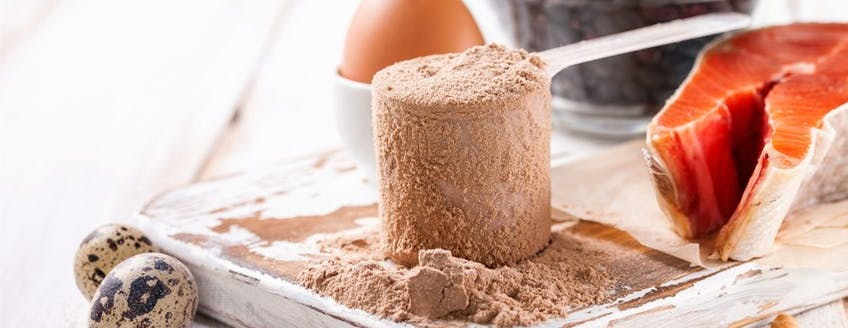 high-quality-protein.jpg