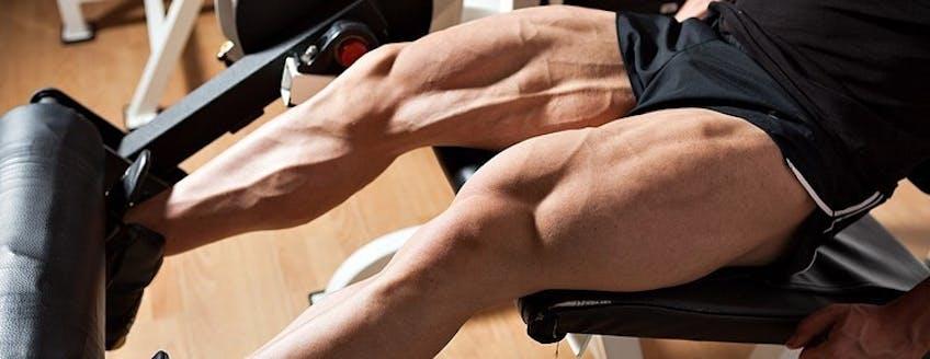 legs-workout.jpg