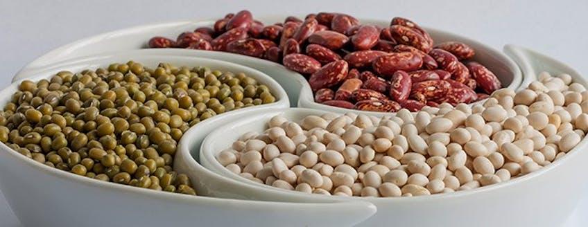 maxinutrition-soy-protein-myth-busting.jpg