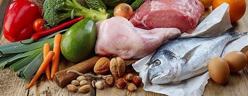 paleo-diet-explained-header.jpg